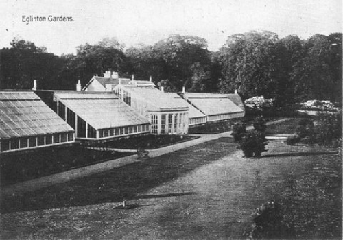 The greenhouses that once stood in Eglinton Estate.
